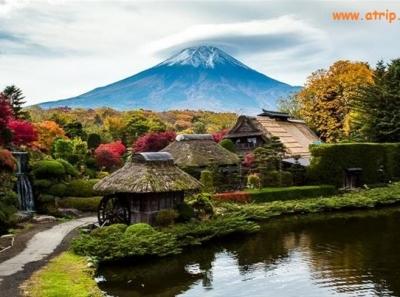 Tour Nhật Bản: Nagoya - Obara - Tokyo - Núi Phú Sĩ - Odaiba - Nikko - Edo Wonderland (Ngắm Hoa Anh Đào Nghịch Mùa) 6N5Đ